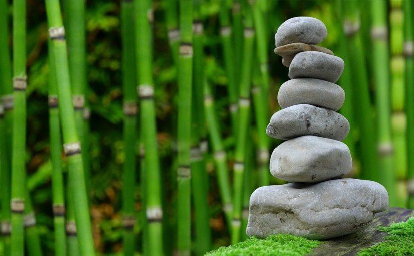 Śliczny oraz porządny ogród to zasługa wielu godzin spędzonych  w jego zaciszu w trakcie pielegnacji.